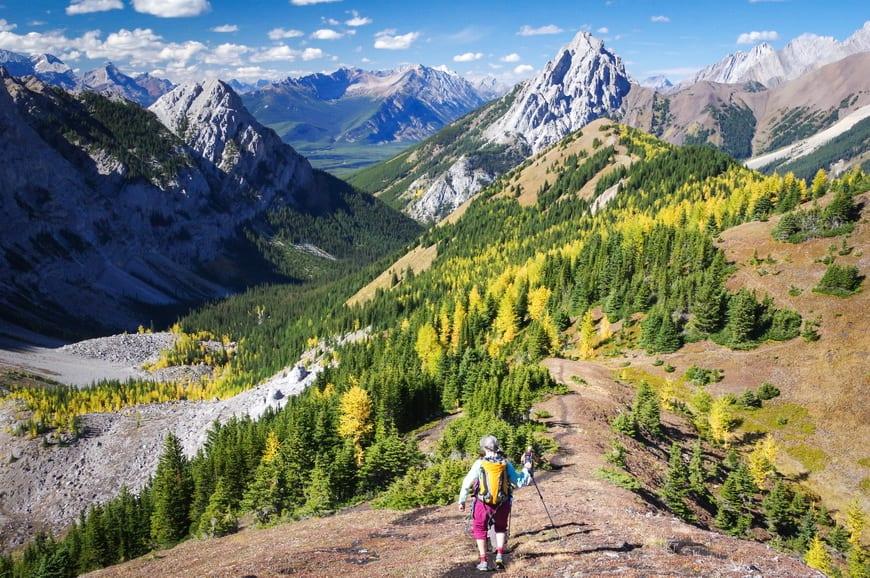 Hike Pocaterra Ridge in September