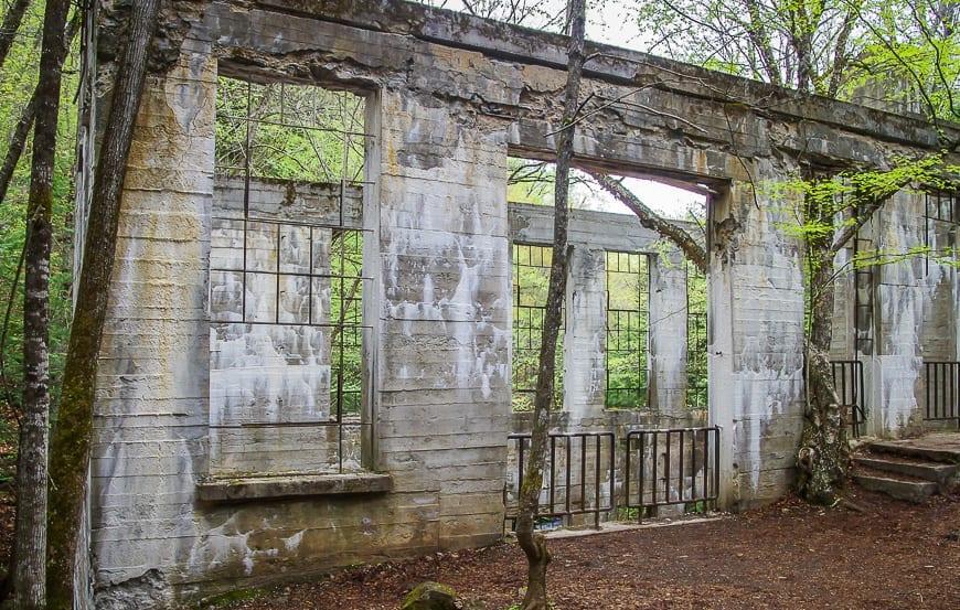 The Thomas 'Carbide' Willson ruins
