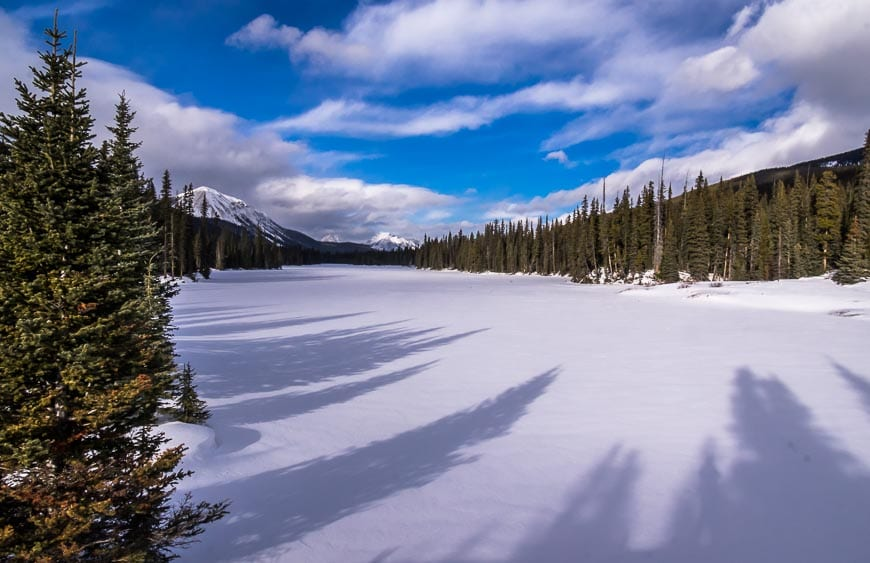 The Easy Hogarth Lakes Loop Snowshoe Trail in Kananaskis Country