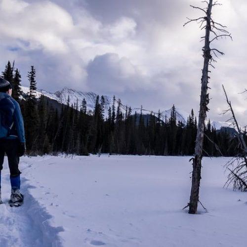 The Easy Hogarth Lakes Loop Snowshoe Trail