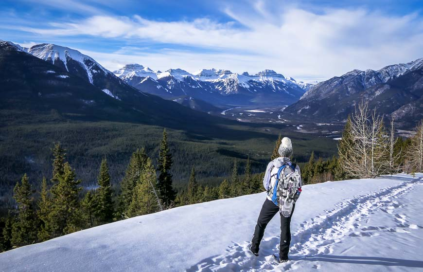 The Sulphur Mountain Hike in Banff National Park