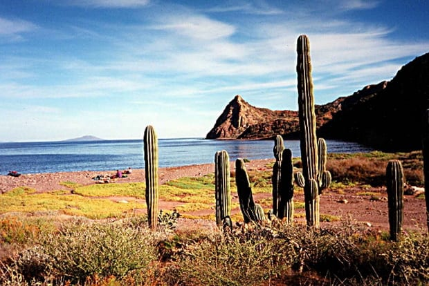 7 Things to See and Do in La Paz, Mexico
