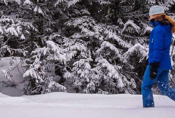 Fernie in winter