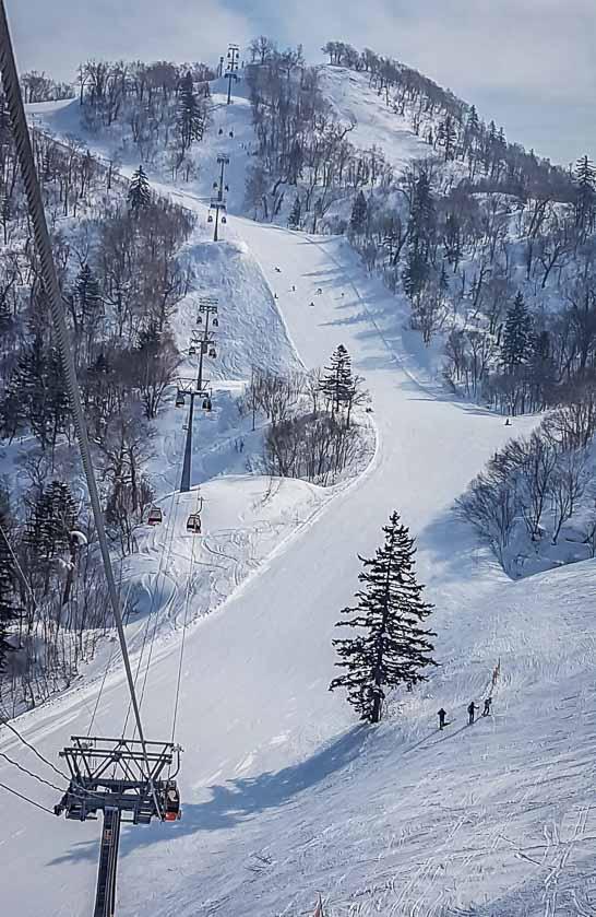 One of the lovely long intermediate ski runs at Kiroro Ski Resort