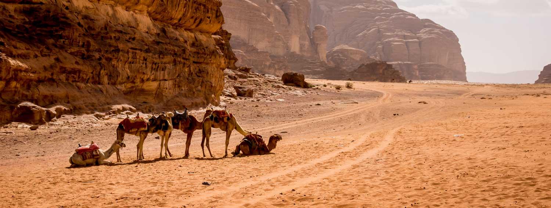An Overnight Stay in a Wadi Rum Camp in Jordan - Hike Bike