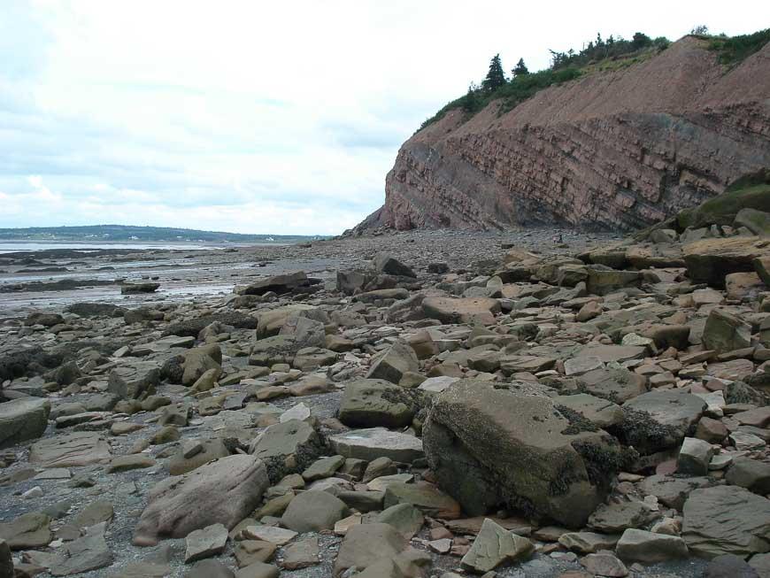 Joggins Fossil cliffs in Nova Scotia