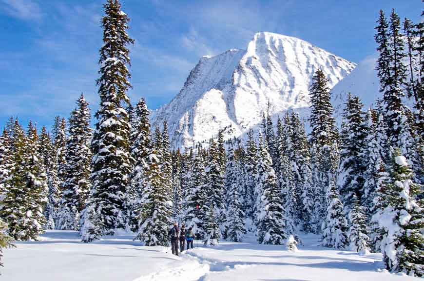 8 Of The Best Places To Snowshoe In Alberta