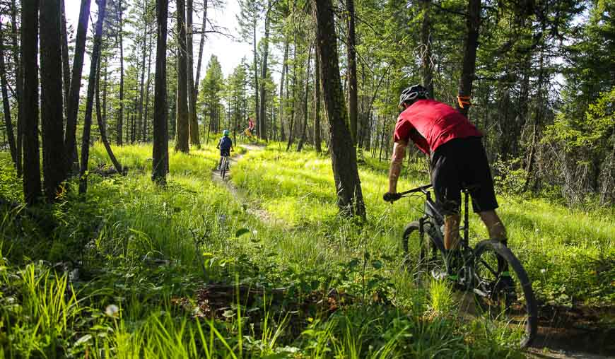 Mountain biking on trails near Whitefish, Montana