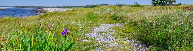 Hiking In Kejimkujik National Park – The Seaside Edition