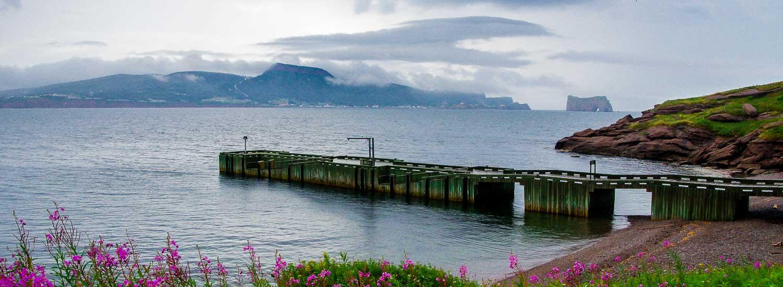A Boat Trip To Bonaventure Island And Percé Rock