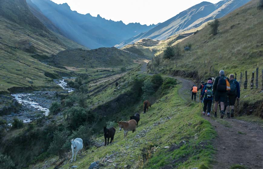 Day 6 on the Choquequirao trek starts off more easily than most days