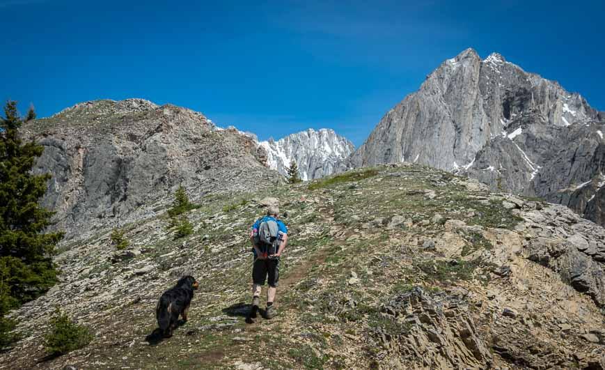 The last part of the King Creek Ridge hike