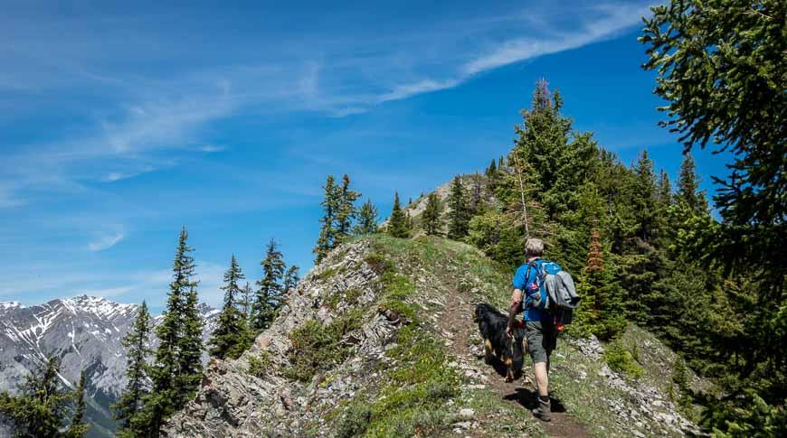 An easy to follow trail along the ridgeline