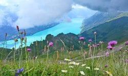 Views Of Lake Brienz From Brienzer Rothorn