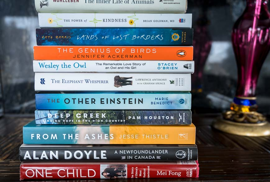 Books To Read To Take Your Mind Off The Virus