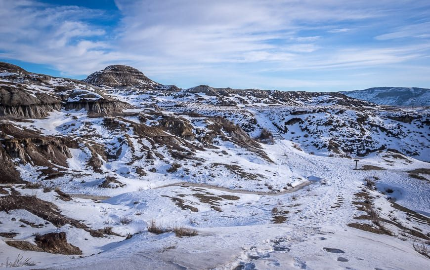 The Interpretive Trail Behind The Royal Tyrrell Museum Is Easy To Follow Even In Winter
