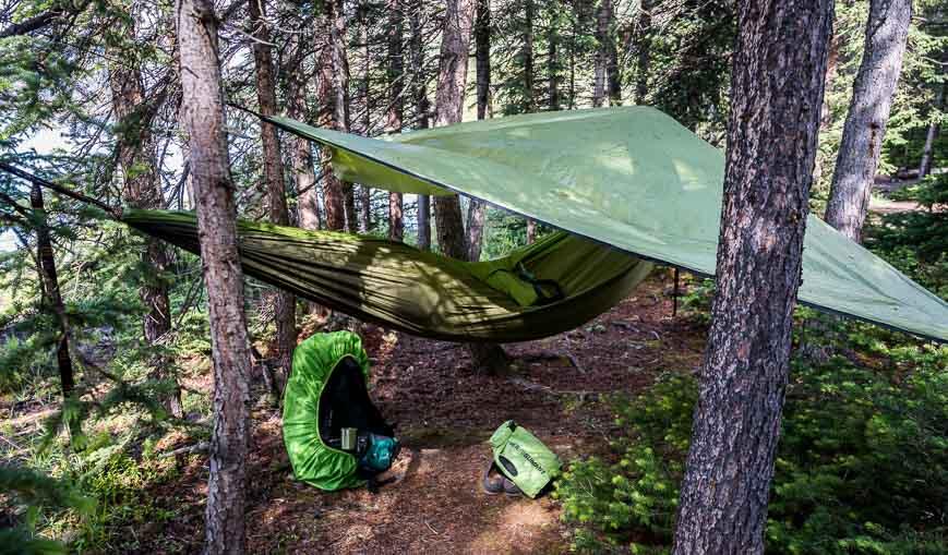 Who has slept in a hammock?