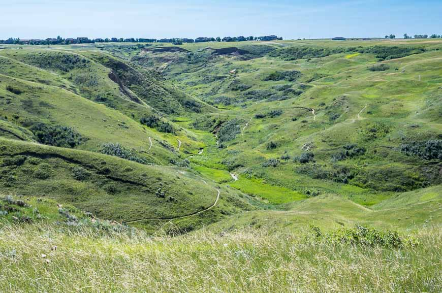 Looking across to the Six Mile Coulee Trails