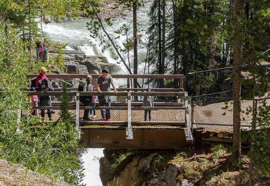Witness the power of Sunwapta Falls