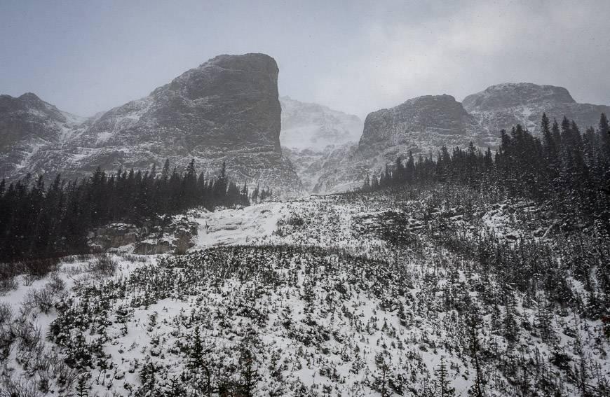 Bourgeau Lake avalanche area