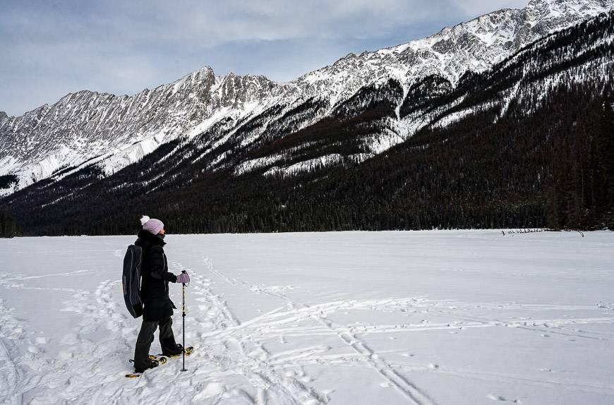 Beaver Lake with a backdrop of limestone mountains