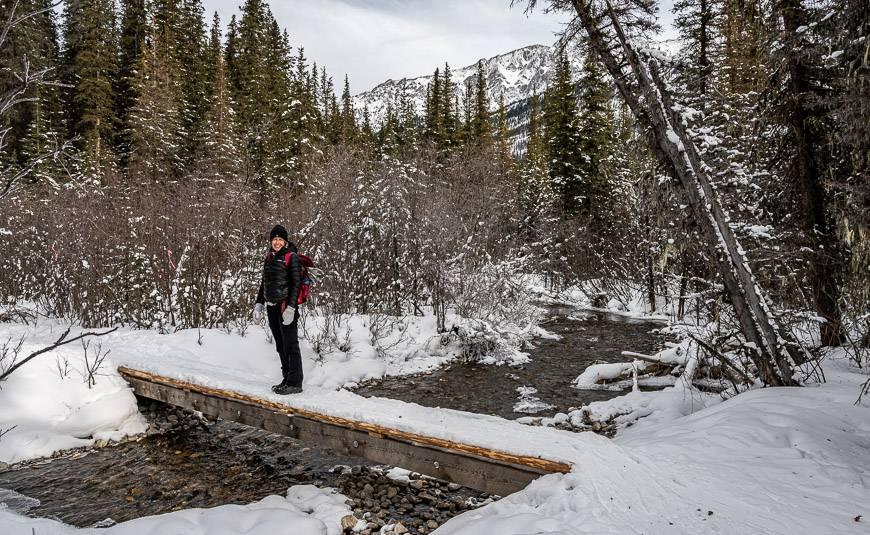 On the trail to Beaver Lake in Jasper National Park