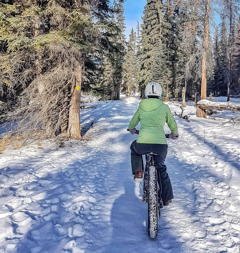 Fat biking on a network of trails leaving from Jasper Park Lodge