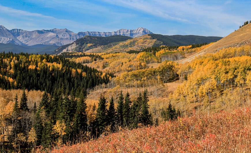 The Sheep River Valley dressed in fall colours
