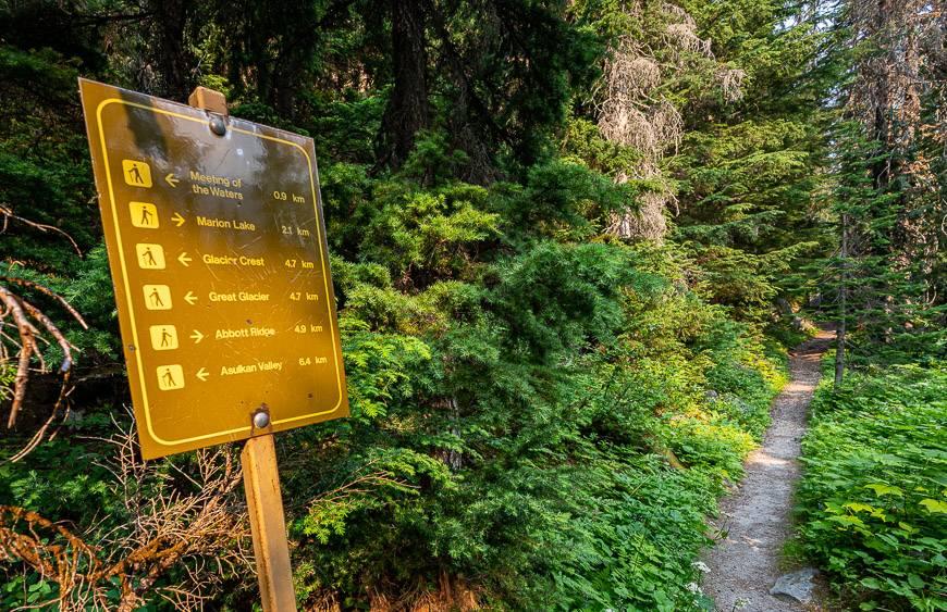 The turnoff onto the Abbott Ridge Trail is well marked