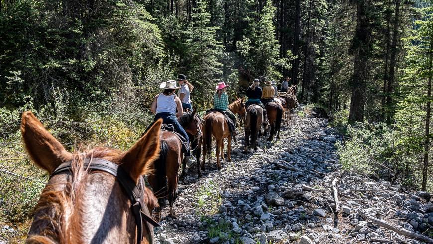 Horseback riding in Banff from Sundance Lodge
