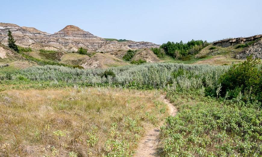 Explore informal hiking trails