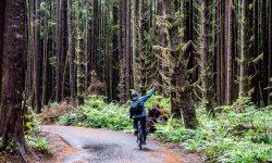 Beautiful Biking From Tofino To Ucluelet
