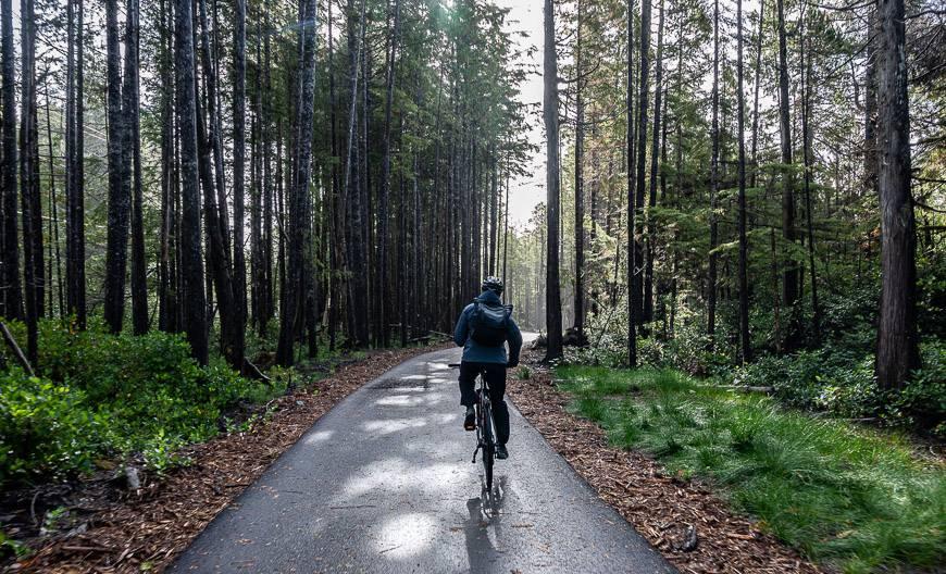 Morning light on the bike trail