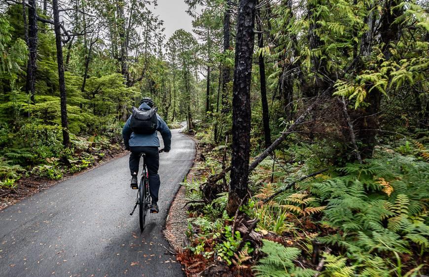 John biking towards Long Beach in Pacific Rim National Park Reserve